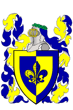 per pale azure and Or, a fleur-de-lys and a bordure counterchanged.